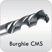 burghie CMS FSR
